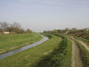 Karašica (Danube) - Karašica near Branjin Vrh