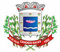 Brasão de Cândido Sales.jpg