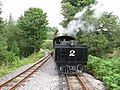 Brecon Mountain Railway - geograph.org.uk - 1451285.jpg