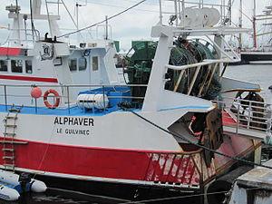 Brest2012 Alphaver (3).JPG
