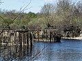Bridge piers of the old Border Counties line - geograph.org.uk - 1254519.jpg