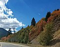 Bridger-Teton National Forest, Greys River Ranger District near Alpine, Wyoming (29552131212).jpg