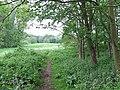 Bridleway, Ryton, Shropshire - geograph.org.uk - 437315.jpg