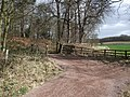 Bridleway at the eastern side of Clumber Park - geograph.org.uk - 1207827.jpg