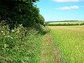 Bridleway towards Huggate - geograph.org.uk - 1395487.jpg