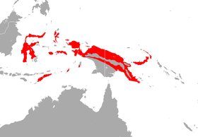 Broad-eared Horseshoe Bat area.png