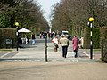 Broad Walk, Regent's Park - geograph.org.uk - 365027.jpg