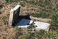 Brown Miller Family Cemetery at Beltsville Agricultural Research Center 1117.jpg
