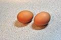 Brown chicken eggs.jpg