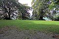 Bryn y Beili, yr Wyddgrug; Bailey Hill, Mold, Sir y Fflint, North Wales 04.jpg