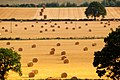 Burford, Oxfordshire, August 2006 harvest, stubble fields and straw bales 1.jpg