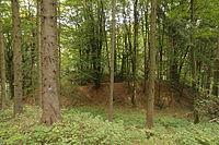 Burgstall Schlossberg (Kemnath am Buchberg) 02.JPG
