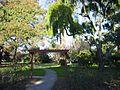 Burlingame washington park4.JPG
