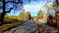 Bytom - Miechowice ulica Matki Ewy - panoramio (1).jpg