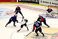 CHL, EC Villacher SV vs. Genève-Servette HC, 23rd September 2014 17.JPG