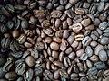 Café-sementes.jpg