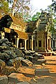 Cambodia-2608 - Bye to Ta Prohm (3614624464).jpg