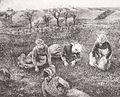 Camille Pissarro - Les Sarcleuses, Pontoise - 1882.jpg