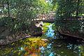 Campanhã-Parque de São Roque da Lameira-Jardins (7).jpg