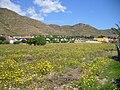 Campingplatz Los Madriles in E 30868 Isla Plana auch für ACSI - panoramio - Karl-Heinz Böhm (3).jpg