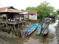 Canoes at Agats (48319987547).jpg