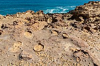 Cape Bridgewater (AU), Petrified Forest -- 2019 -- 0757.jpg