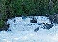 Cariboo River in Bowron Lake Provincial Park (DSCF3180).jpg