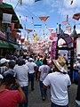 Carnaval Zoque 2020 17.jpg