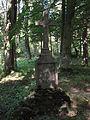 Caryńskie - ruiny (15).jpg
