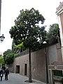 Casa Canals-Miralles P1110252.JPG