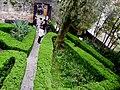 Casa del Petrarca 2017-03-26 f08.jpg