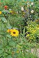 Casa y jardín de Monet. 45.JPG