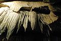 Cave drapery, Boyden Cave, Calif.jpg