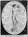 Celestial influx on . . man; illustration Wellcome L0016672.jpg