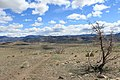 Centennial Park - panoramio (9).jpg