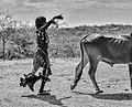 Ceremony, Hamar Tribe, Ethiopia (21132344569).jpg