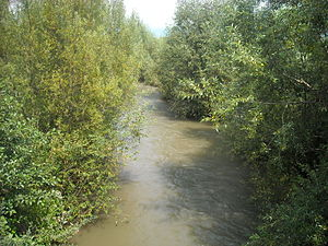 Cerna river at barcea mare.jpg