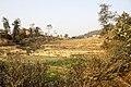 Changunarayan photowalk-WLV-3781.jpg