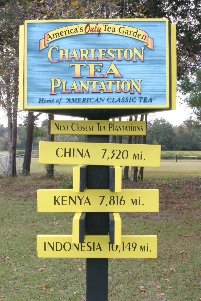 South Island Plantation Georgetown Sc