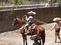 Charreada en El Sabinal, Salto de los Salado, Aguascalientes 11.JPG