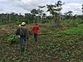 Checking the fields.jpg