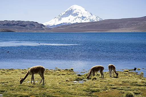 Chungara Lake and Volcan Sajama Chile Luca Galuzzi 2006