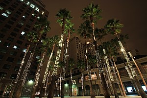 San Jose Chinatown - Circle of Palms Plaza and Fairmont at Night, almost all traces of Chinatown are gone from the area that was once a Chinatown