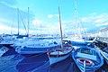 Circolo Nautico NIC Porto di Catania Sicilia Italy Italia - Creative Commons by gnuckx - panoramio - gnuckx (2).jpg