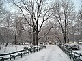 Cismigiu snow - panoramio.jpg