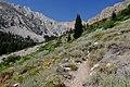 Climbing to Taboose Pass (42503950645).jpg