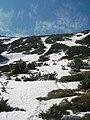 Coborând Muchia Slivei - panoramio.jpg
