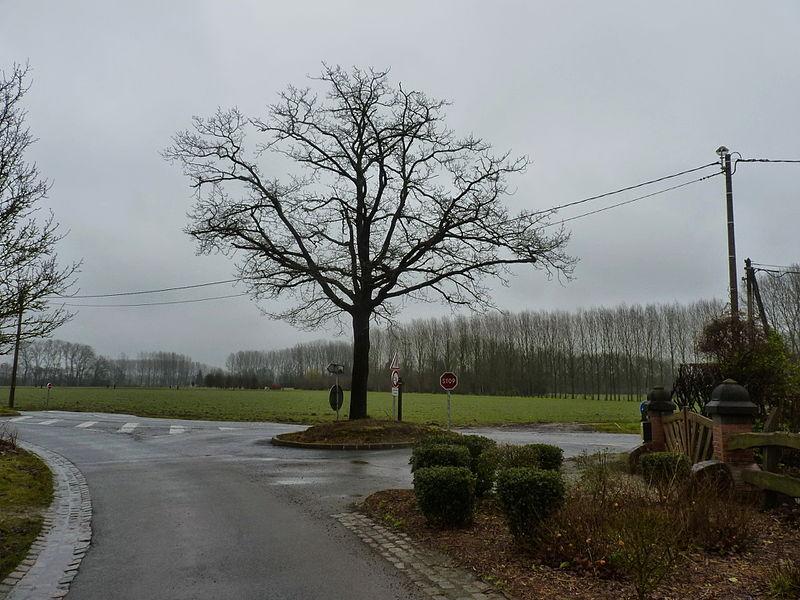 L'arbre de la liberté, lieu-dit Le Mazet.-  Cobrieux dans le   Nord Nord-Pas-de-Calais.- France.