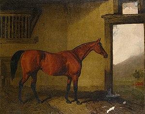 Cobweb (horse) - Cobweb in a loose box by Lambert Marshall