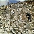 Collectie Nationaal Museum van Wereldculturen TM-20029613 Arbeiders hakken steen bij steenafgraving Aruba Boy Lawson (Fotograaf).jpg